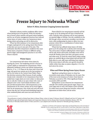 Freeze Injury to Nebraska Wheat