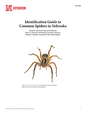 Identification Guide to Common Spiders in Nebraska (EC1590)