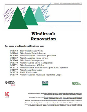 Windbreak Renovation