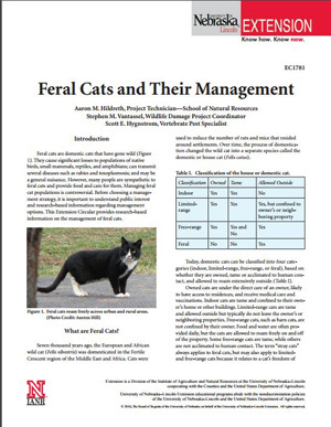 Feral Cats and Their Management