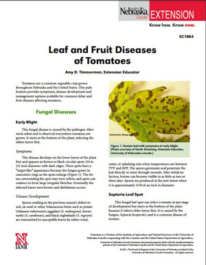 Leaf and Fruit Diseases of Tomatoes