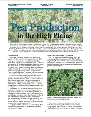 Pea Production in the High Plains