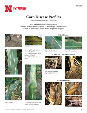 Corn Disease Profiles: Diseases Favored by Wet Conditions (EC1909)