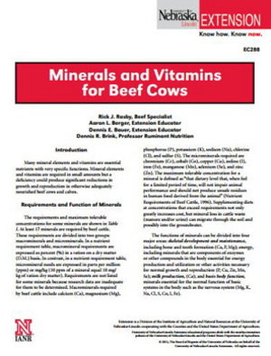 Minerals and Vitamins for Beef Cows