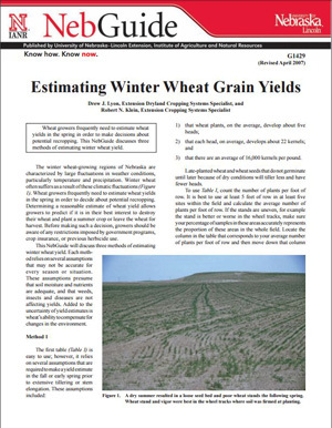 Estimating Winter Wheat Grain Yields