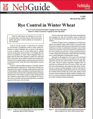 Rye Control in Winter Wheat