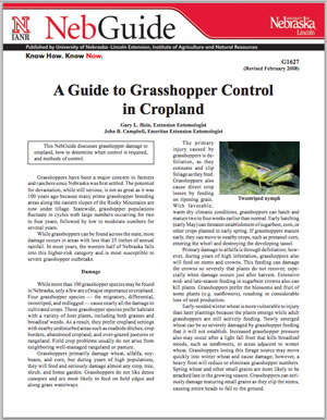 A Guide to Grasshopper Control in Cropland