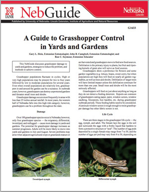 A Guide to Grasshopper Control in Yards and Gardens
