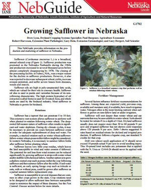 Growing Safflower in Nebraska