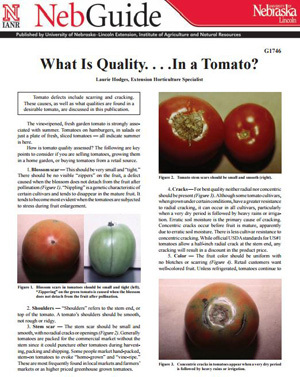 What is Quality ... In a Tomato?