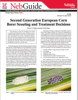 Second Generation European Corn Borer Scouting and Treatment Decisions