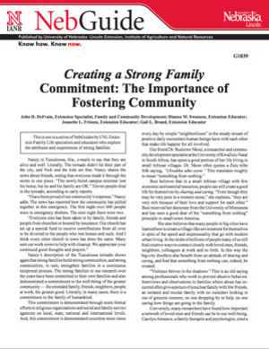 Creating a Strong Family