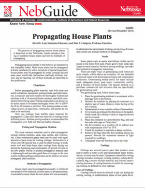 Propagating House Plants