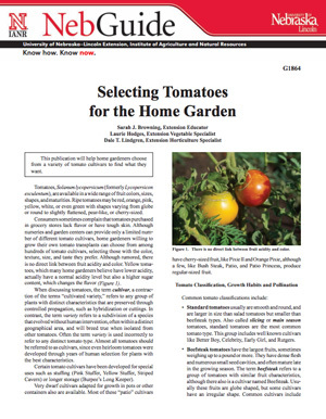 Selecting Tomatoes for the Home Garden