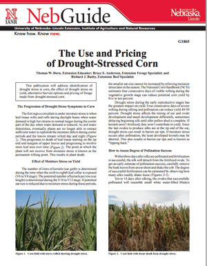The Use and Pricing of Drought-Stressed Corn
