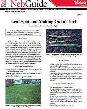 Leaf Spot and Melting Out of Turf