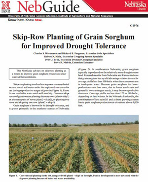 Skip-Row Planting of Grain Sorghum for Improved Drought Tolerance