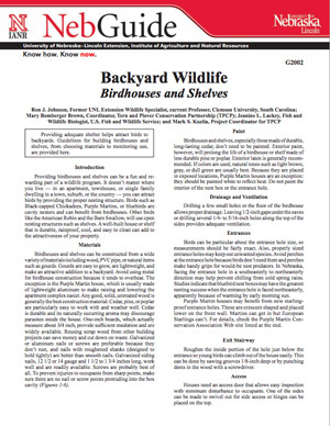 Backyard Wildlife Bird Houses and Shelves