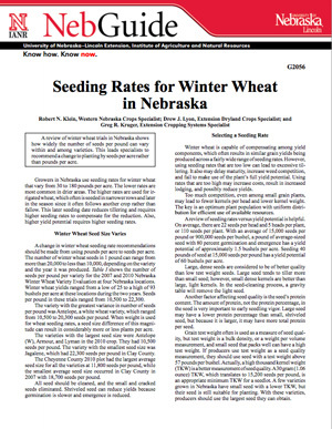 Seeding Rates for Winter Wheat in Nebraska