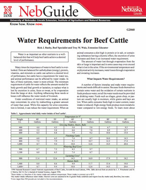 Water Requirements for Beef Cattle