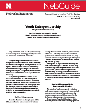 Youth Entrepreneurship (G2299)